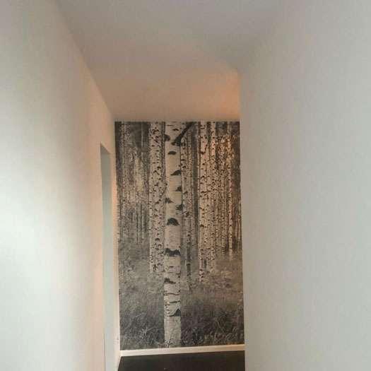 Schilder - Huisschilder - Verver - Verf - Dessel - Mol - Balen - Geel - Turnhout